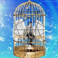 Supernatural S8 Castiel image-pic : Caged Angel by noji1203