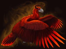 Fire Eagle by Aerophoinix