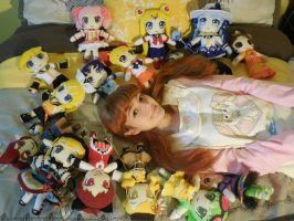 2013 Plushie Collection by frillycarnival
