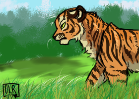 Tiger by OneLifeRemaining