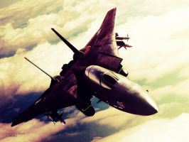 Ace Combat 5 by Raidism