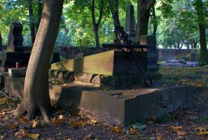 Old Protestant Cemetery by Su58