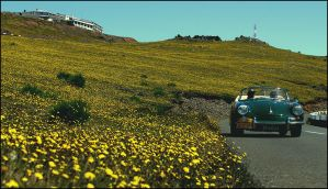Madeira Classic Rally '07 by Lancia-Stratos