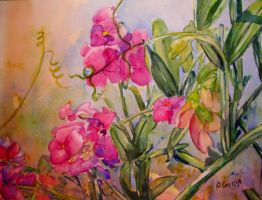 Sweet Peas by p-e-a-k