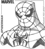 SPIDERMAN XL by icemaxx1