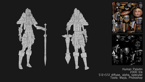 Human Paladin Wireframes . by Tpose
