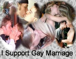 I Support Gay Marriages by NekoDemonLynn