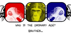 Primary Apes by MStout