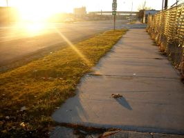 Sunny Sidewalk by missilexcore