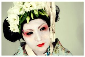 Geisha OO6 by EmbryonalBrain