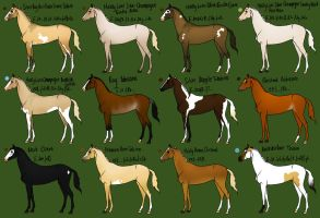 Natural horse adoptables 6 by MelonHeadGirl