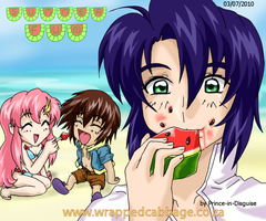 Gundam SEED Summer Fun by Prince-in-Disguise