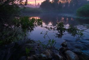 6550 by Heardbydeaf
