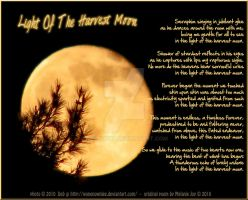 Light Of The Harvest Moon by meljoy68