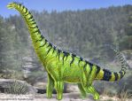 Brachiosaurus Reconstructed by TheDragonofDoom