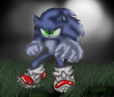 .:Sonic the Werehog:. by MoonTiger456