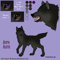 Aero.or.Aura Reference Sheet by Jenny2-point-0