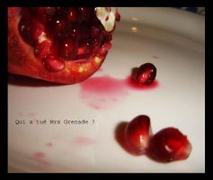 Who killed Mr Grenade... by sofille