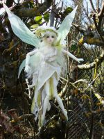 Soom Fairy Nenad by Atelier-Cynamon