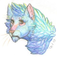 Stuff2BlueCat by SOLIDShift