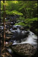 One of My Favorite Spots GSMNP by TRBPhotographyLLC