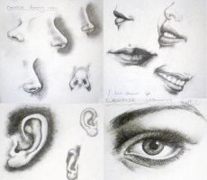 Facial Features Excercise by GingerNutt