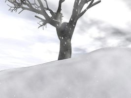 Tree on a hill - Winter by mariusp