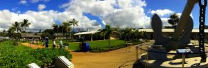 Pearl Harbor pano by Beogard