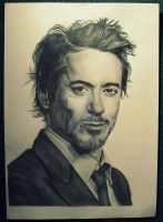 Robert Downey jr. by Ginchilla194