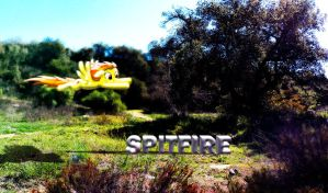 Spitfire Nature Wallpaper by InternationalTCK