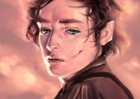 Frodo Baggins by Sanarae