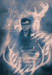 James Potter by Anaya21