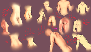 Male and female body study by moni158