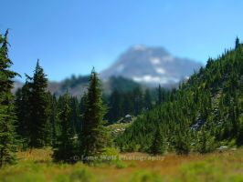 Cairn Basin in miniature by LoneWolfPhotography
