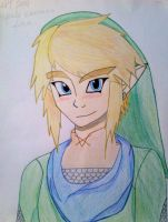 Hyrule Warriors: Link by ToneyTheTigress