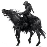 Dark Rider by aljas
