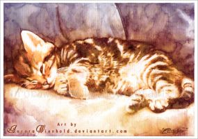 Cat nap by AuroraWienhold