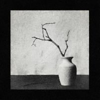 still life with twig by Volodina-Yulia