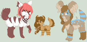 Adopts 2 by Ambrity