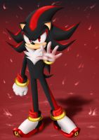 Shadow The Hedgehog by Selene-Galadriel