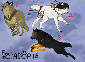 Wolves Adoptables CLOSED! by FourPawsADOPTS