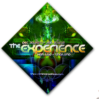 The Experience by Delysid