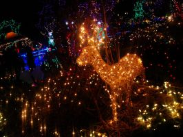 Festival of Lights by MelodicInterval