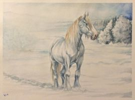Solstice +Watercolor+ by Fire-n-ash