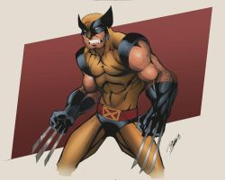 Wolverine by DaveJorel