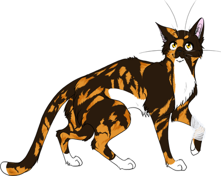 warrior cats coloring pages spottedleaf - photo#38