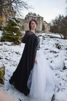 Ice queen stock 3 by Random-Acts-Stock