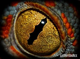 Gecko Eye by LeeRoyDARex