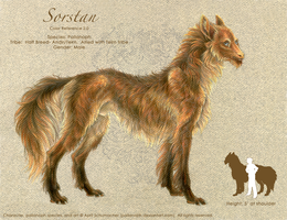 Sorstan: Color Reference 2.0 by pallanoph