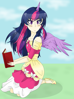 A Princess and Her Book by Unicornicopian